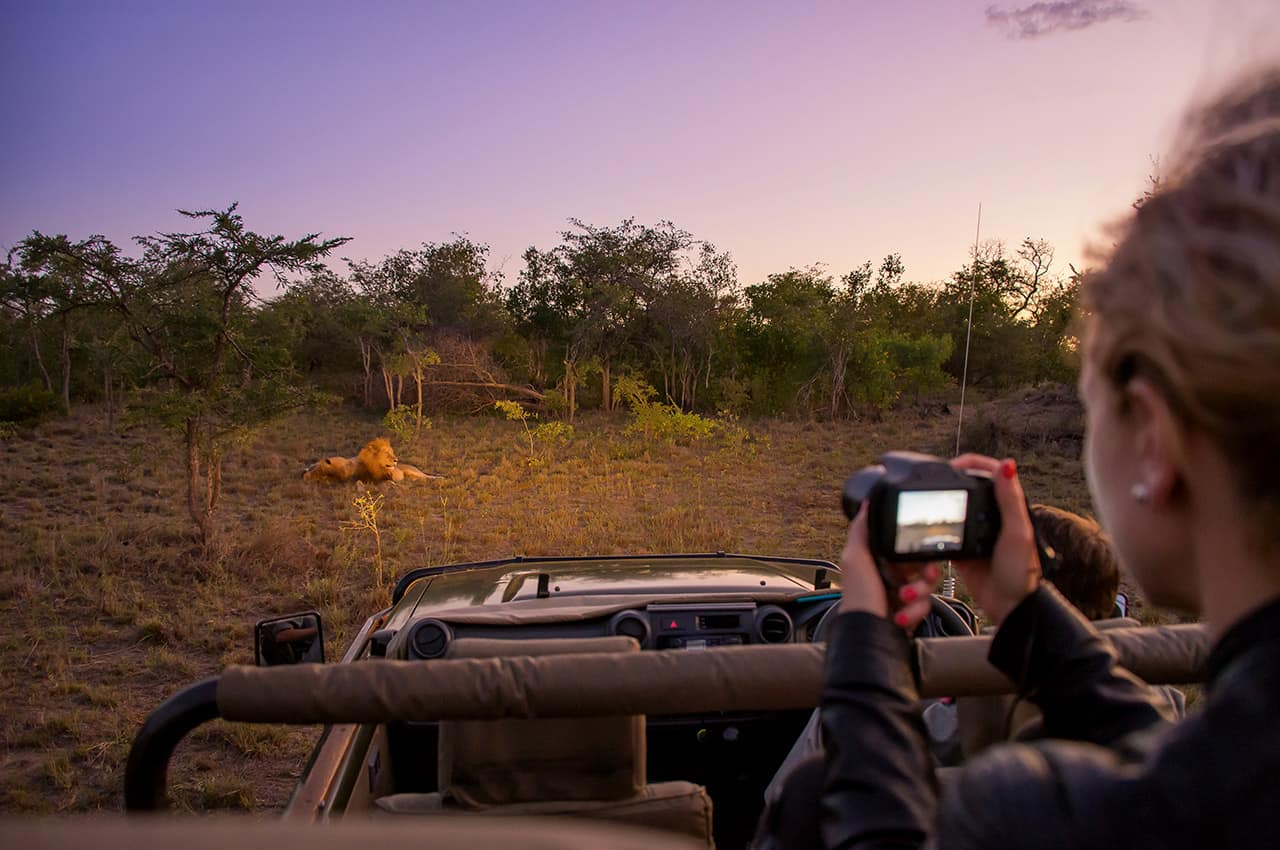Safari na África do Sul