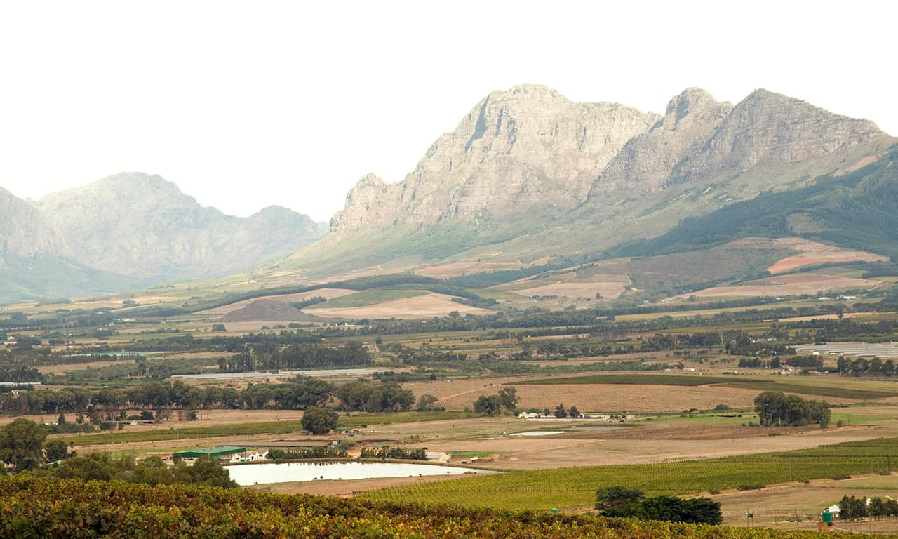 Vinícola em Western Cape Province