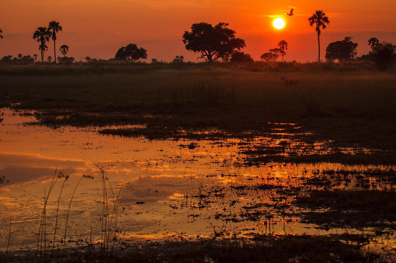 Pôr-do-sol em Botswana