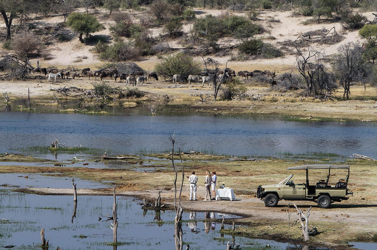 Reserva Leroo La Tau, Safari, Botswana, Africa Turismo