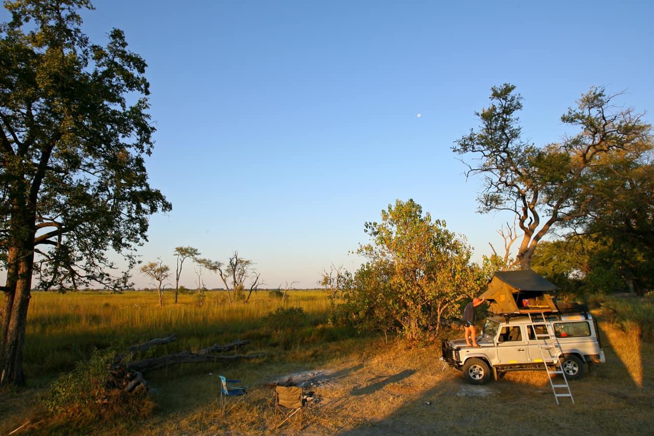 Safári Botswana Reserva Moremi