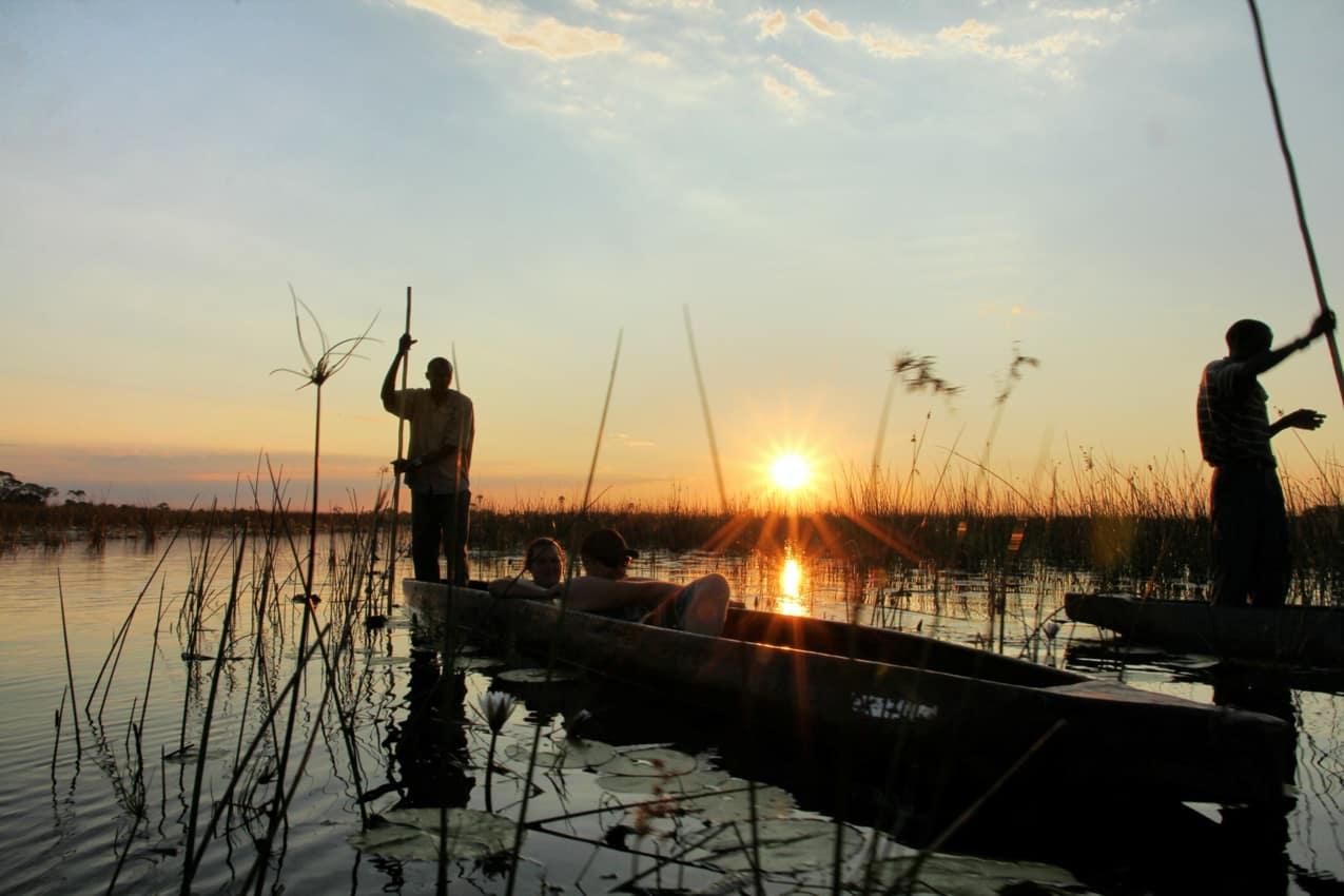 Safári Delta do Okavango Botswana