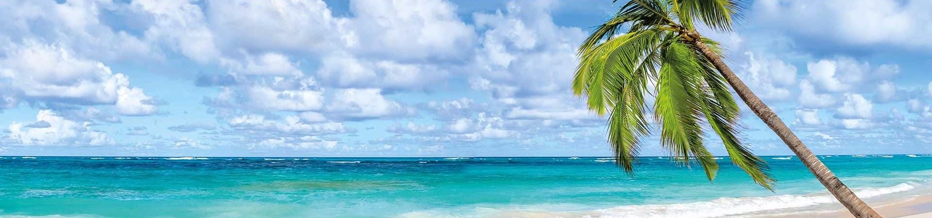 Punta cana banner