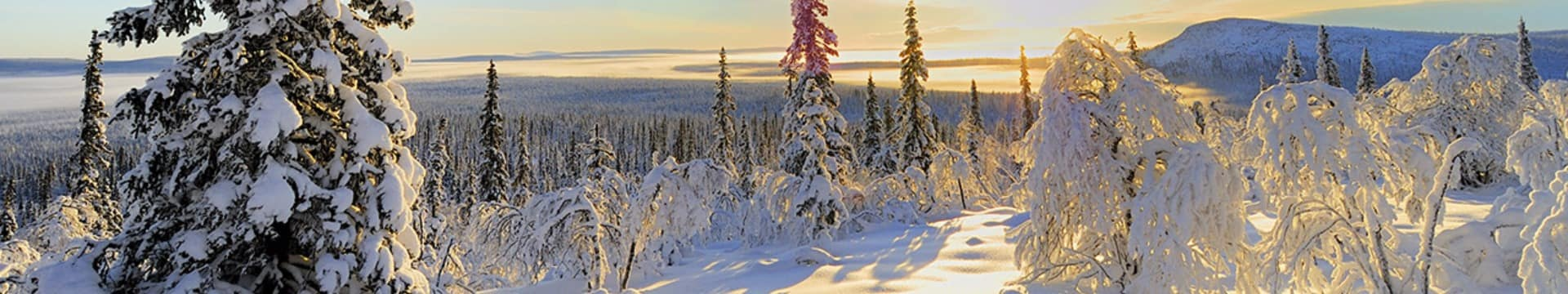 Vista em reserva natural da Lapônia, Finlândia.