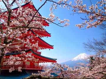 Japão em Grande Estilo