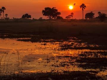 Zimbábue, Zâmbia e Botswana