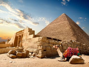 Ruinas e camelo