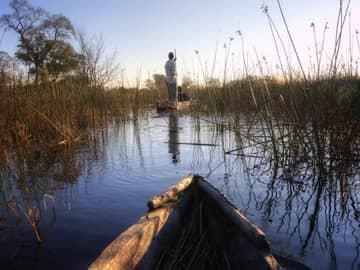 Safári Botswana Delta do Okavango