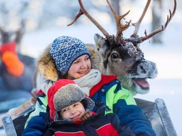 Safári de renas na floresta - Lapônia, Finlândia.