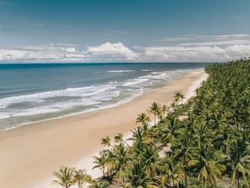 Encantos da Bahia: Casa dos Arandis & Txai