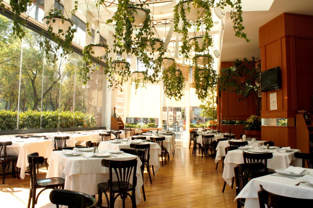 Marquis Reforma Hotel & Spa, Cidade do México, México | Hotéis Kangaroo Tours