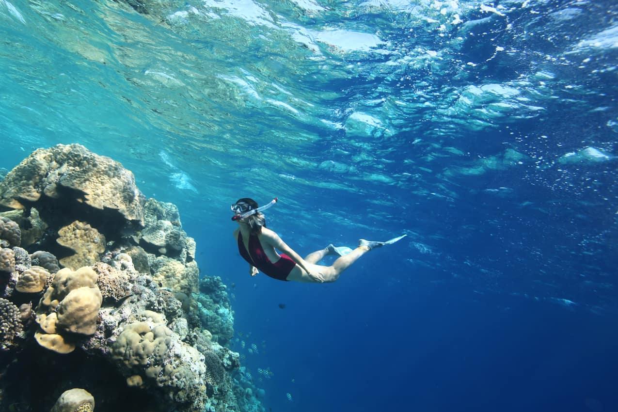 Atividade snorkelling coral, Anantara Kihavah Villas, Ilhas Maldivas