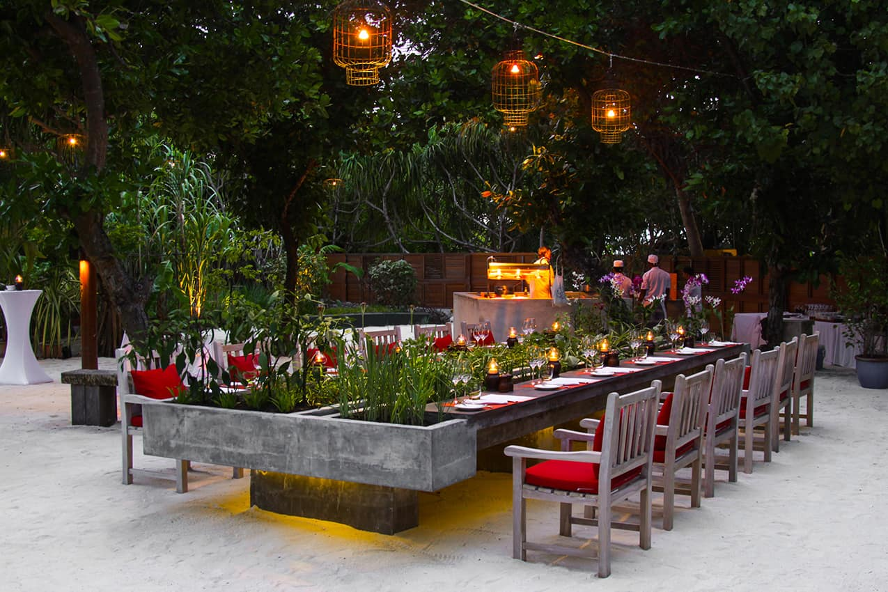 Chef's Herbs GardenKanuhura Maldives