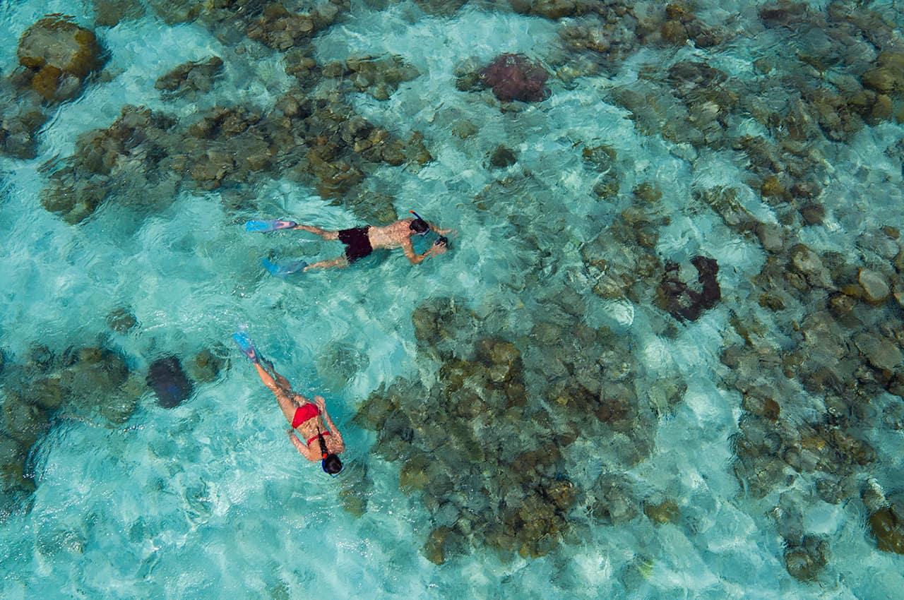 Snorkelling no recife no Anantara Kihavah