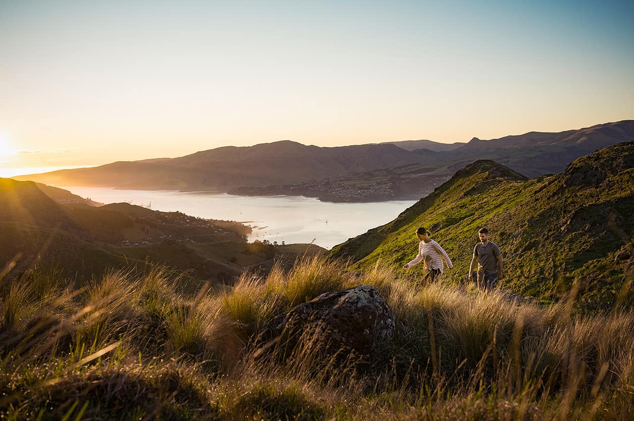 Atividade Christchurch, Nova Zelândia