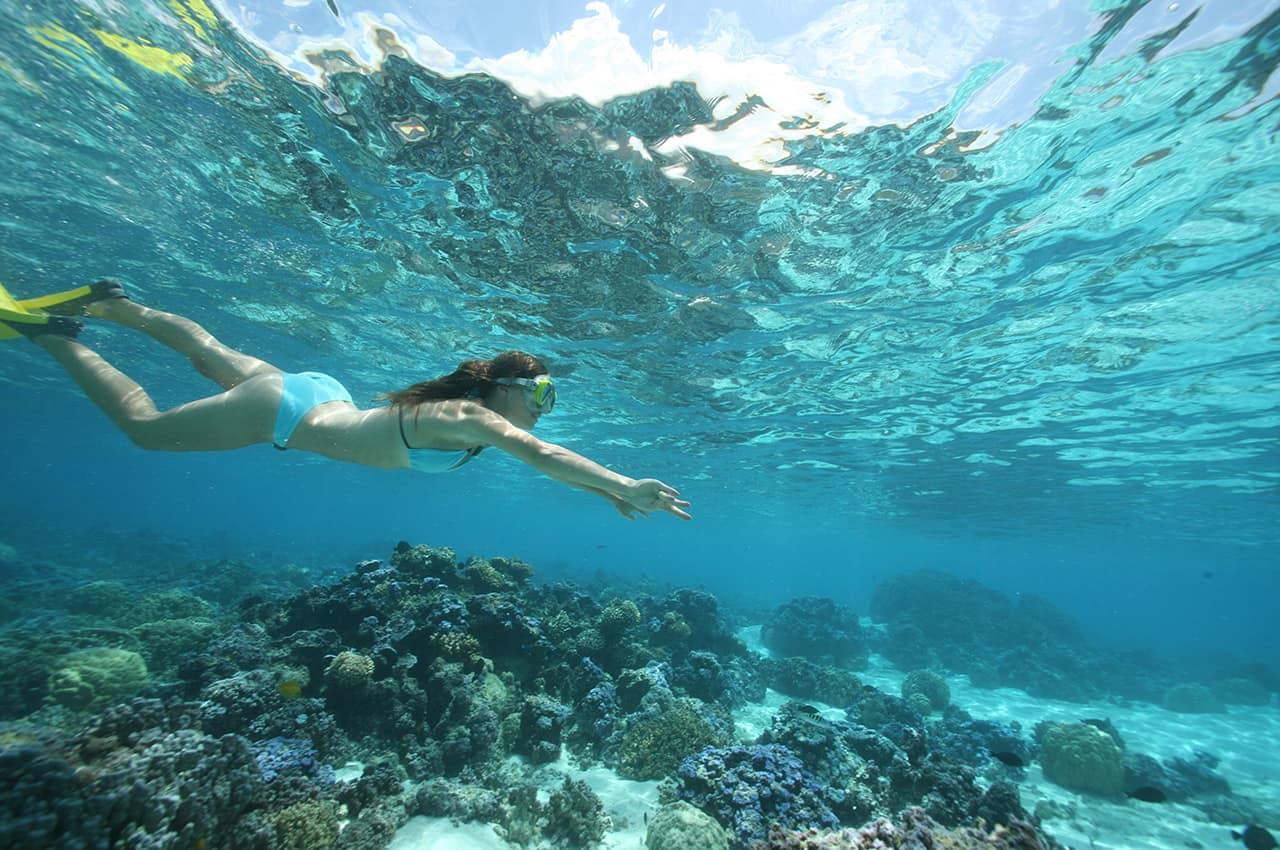 Snorkelling em Moorea