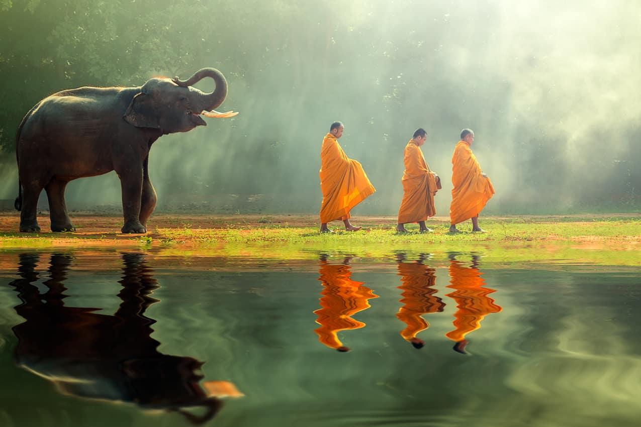 Monges, Elefantes, Viagem Tailândia