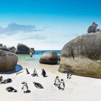 Boulders Beach, África do Sul