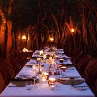Jantar Boma no Molori Safari