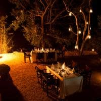 Jantar, Sabi Sabi Little Bush Camp