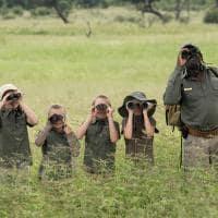 African bush camps khwai bush camp safari criancas