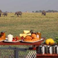 Café manhã Chobe