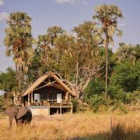elefante belmond eagle island lodge