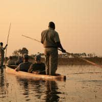 Safári em Botswana