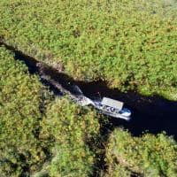 Safari Okavango Delta