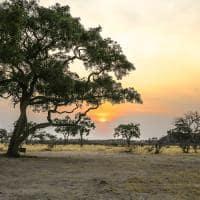 Pôr do sol em Botswana