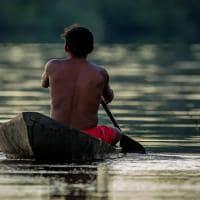 Amazonia indio