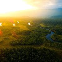Amazonia vista aerea floresta