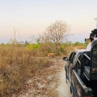 Pousada trijuncao safari