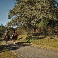Six senses botanique atividade cavalos