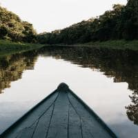 Untamed amazon passeio