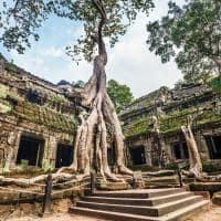 Viagem Camboja Templo Ta Prohm Angkor