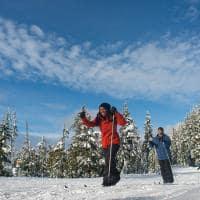 Canada callaghan ski area whistler