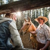 criadores de cavalos Banff National Park