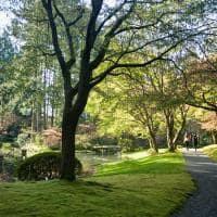 Vancouver ubc nitobe memorial gardens