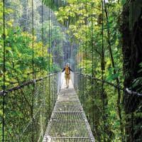 Costa rica selva tropical verde