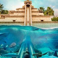 Atlantis the palm aquaventure towerofneptune