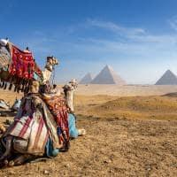 Piramides cairo egito
