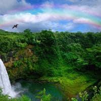 Cachoeira em Kauai - Havaí.