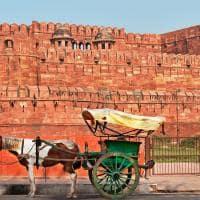 Carruagem Indiana, Entrada Forte Agra, Viagem Índia