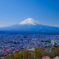 Fujiyoshida Monte Fuji cerejeira sakura, Japão