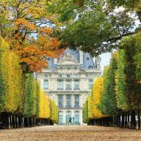 Jardim de Tuileries louvre