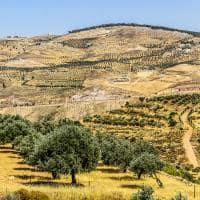 Ruínas de Umm Qais, Jordânia.