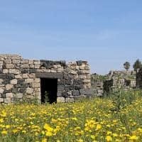 Ruínas de Umm Qais - Jordânia.