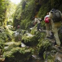 Atividades - Trekking