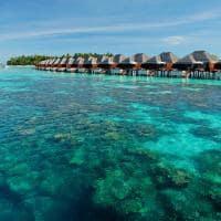 Ayada maldives corais